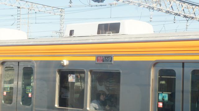 DSC00049.JPG