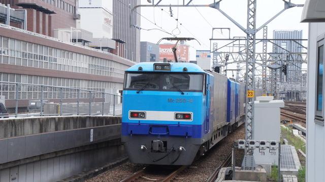 DSC00092.JPG