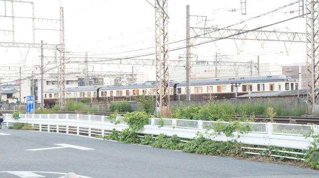 DSC00301.JPG